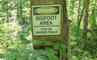 bigfoot-warning