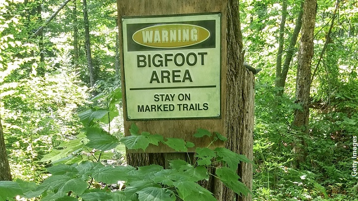 Binging On Bigfoot