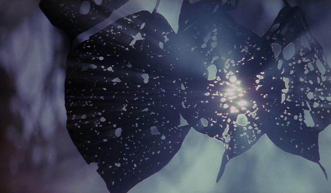 Kubrick - However vast the darkness