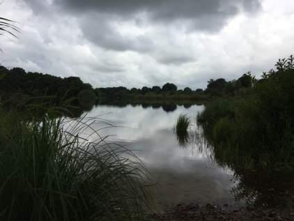 Einfeldersee1