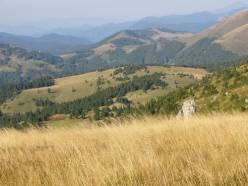 pastviny a lúky Národného parku Veľká Fatra