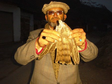 A local man showing the feathers of an Eagle that he believes died after hunting birds poisoned as a result of eating the dead dogs left in the open by TMA Booni