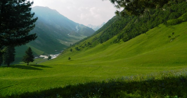The lush green valley