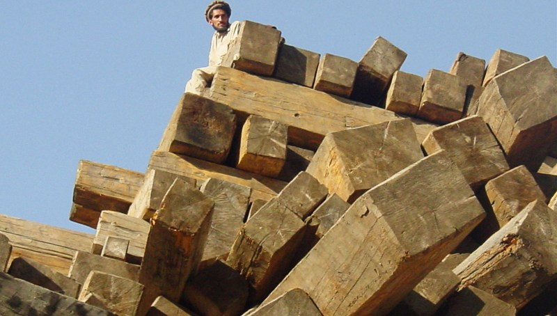 Transparent mechanism for GB timber disposal urged
