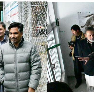 Snow Leopard Rehabilitation and Quarantine Center established in Naltar, Gilgit