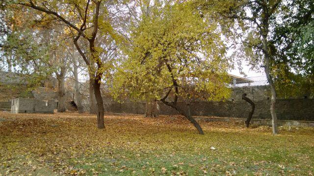 autumn-in-gilgit-city-4