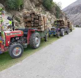 Timber smuggling bid foiled by Diamer Forest Department