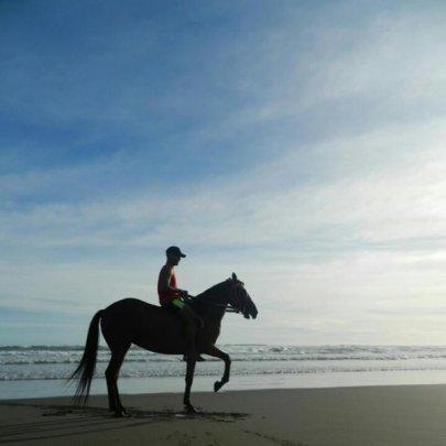 naik kuda parangtritis