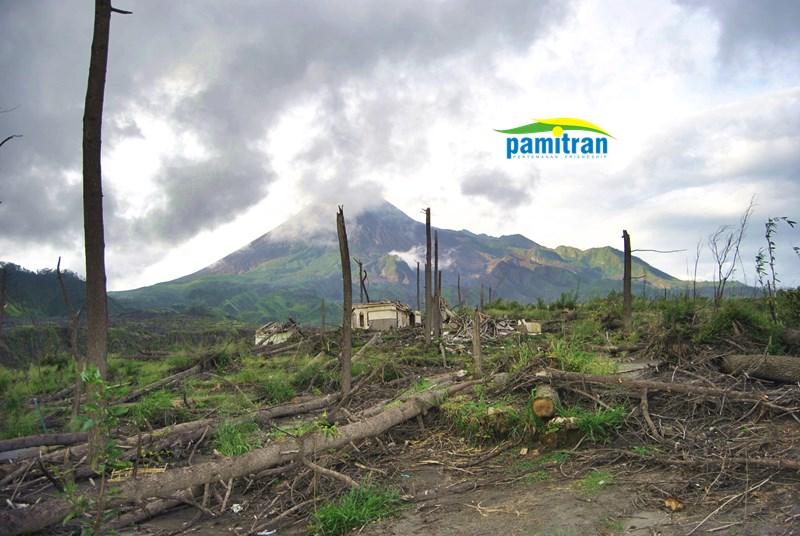 Landscape Merapi