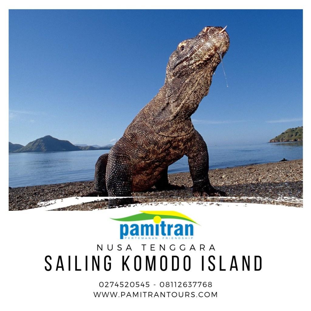 Sailing Komodo 3 Days 2 Nights