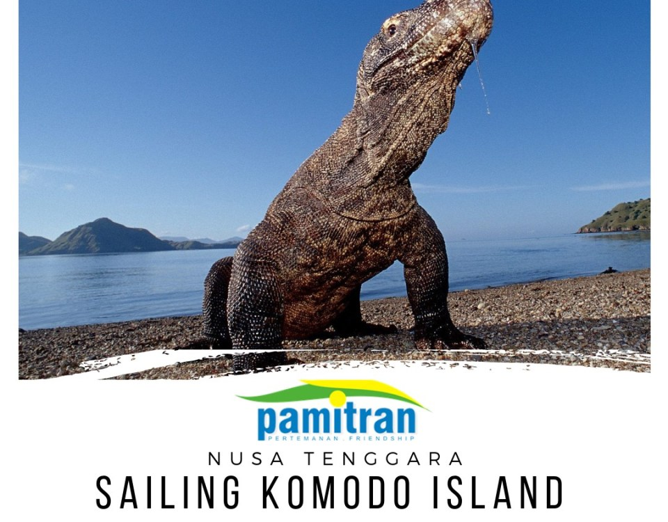 Sailing Komodo 3 Days 2 Nights