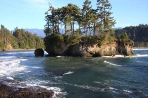 Island at Tongue Point