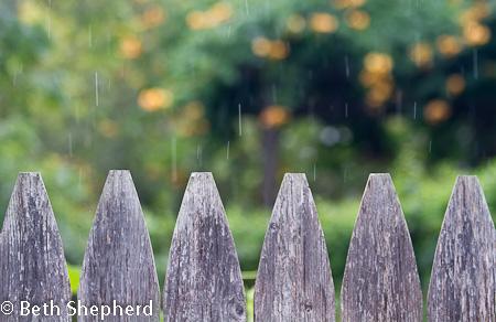 Rain over fence