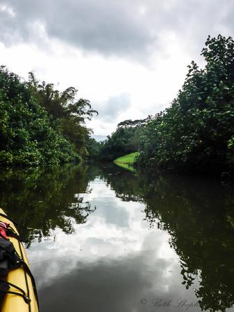 Hanalei River reflections in Kauai