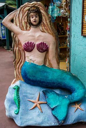 Hanalei mermaid