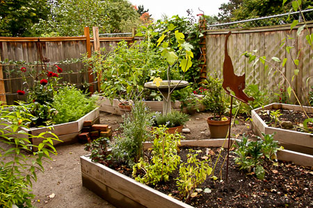 Garden before bricks