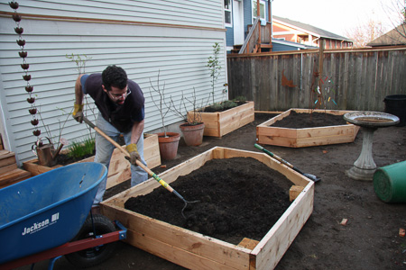 New planter boxes 3