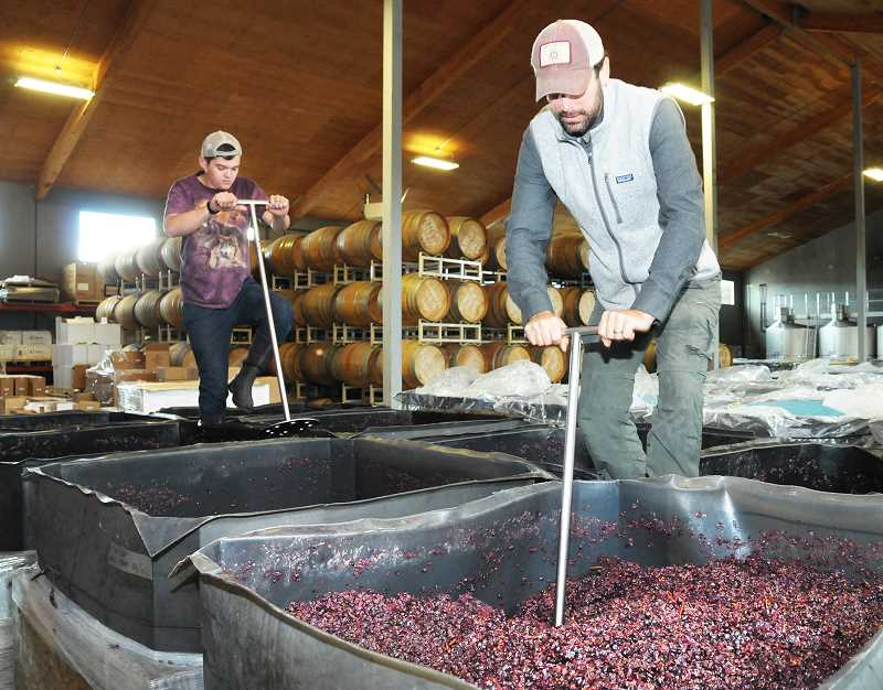 GRAPHIC FILE PHOTO - The production techniques of making wine will likely morph in the face of climate change in the coming years, as will the elevation where grapes are grown and the varietals available.