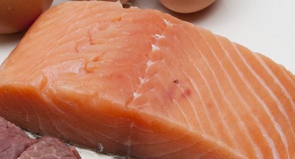 fisk-gravide-miljøgifter