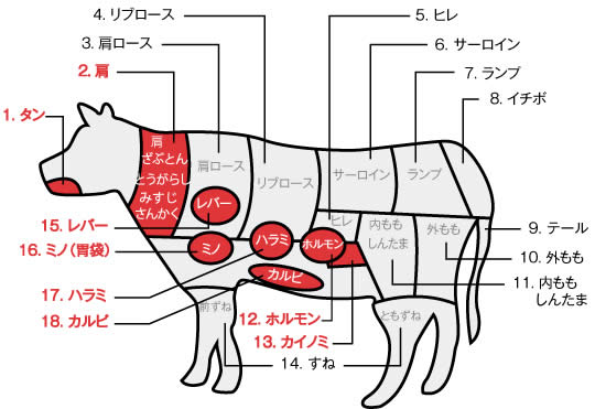 牛の部位2