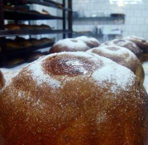 Toña_sin_lactosa_sin_gluten-www.panaderiajmgarcia.com-alicante-panaderia