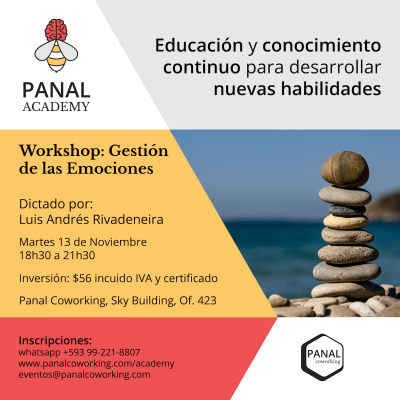 panal_academy_flyer_nov_2018_1