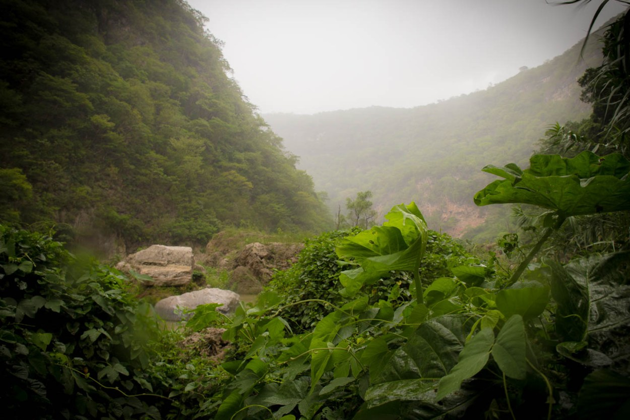 The misty river valley/canyon