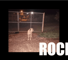 Caso Rocky