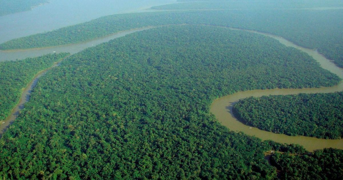 69.amazon-rainforest