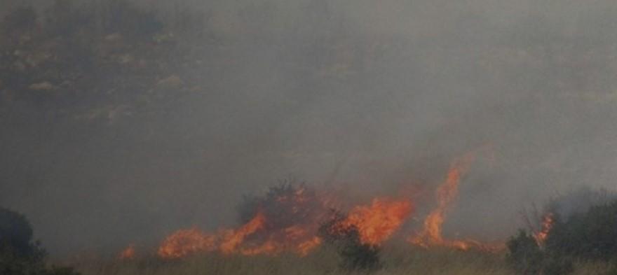 ΦΩΤΙΑ ΤΩΡΑ: Μεγάλη πυρκαγιά στην Ηλεία | panathinaikos24.gr