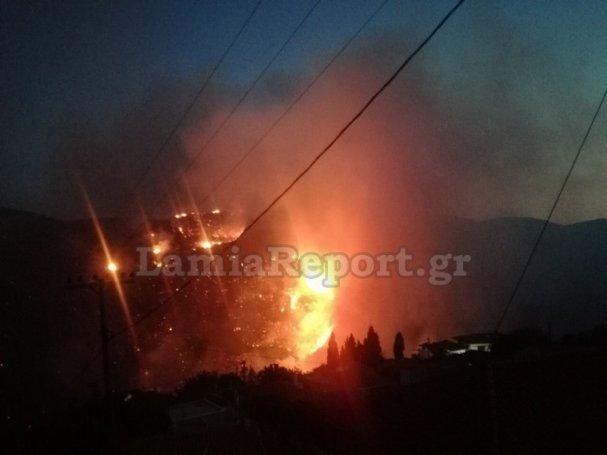 Μεγάλη φωτιά στην Εύβοια: Μάχη με τις φλόγες όλη τη νύχτα | panathinaikos24.gr