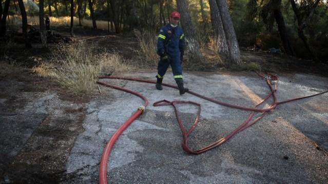 Τρεις νέες πυρκαγιές σε Πρέσπες, Κιλκίς και Ηλεία – Επί τόπου η πυροσβεστική | panathinaikos24.gr