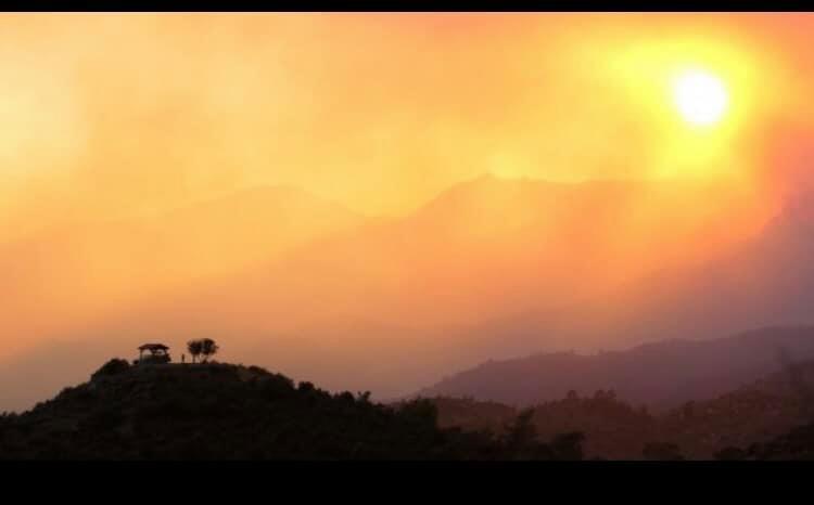 Κίνηση αλληλεγγύης από τη Θύρα 13 Πάφου για τους πυρόπληκτους | panathinaikos24.gr