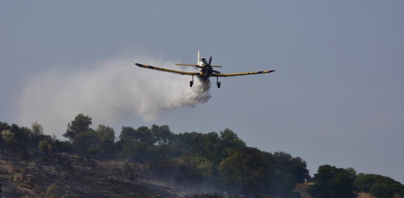 Φωτιά στην Ανάβυσσο: Ρίψεις νερού από εναέρια μέσα   panathinaikos24.gr