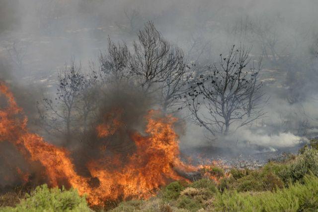 Κάηκε η Βαρυμπόμπη: Η φωτογραφία από ψηλά που σοκάρει (pic) | panathinaikos24.gr