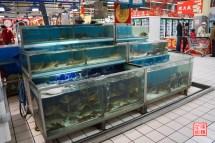 05_supermarkt_frischfisch