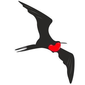 Fragata - Ilustración en vectores