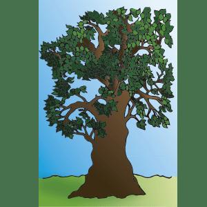 ilustraciones de árboles