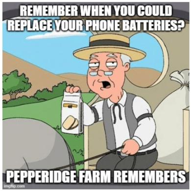 Irreplaceable batteries