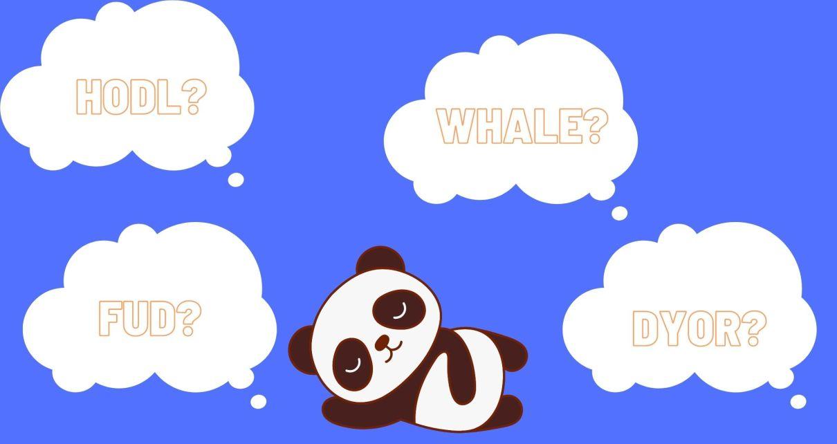 Panda thinking about crypto lingo