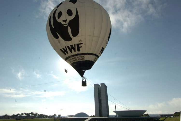 Why Should We Save The Giant Panda- WWF Hot Air Balloon | Panda Things