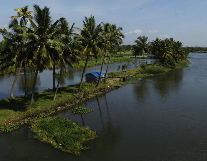 backwater-stretches-kochi