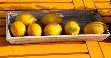 レモンと休日