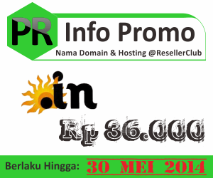 Promo nama domain dot in
