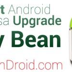 Handset Support Jelly Bean