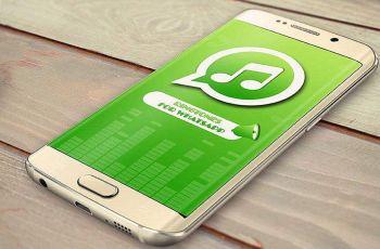 Mengganti Nada Notifikasi WhatsApp