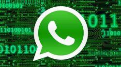 Cara Menyelamatkan Akun WhatsApp
