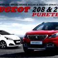 peugeot-208-2008-puretech-2017
