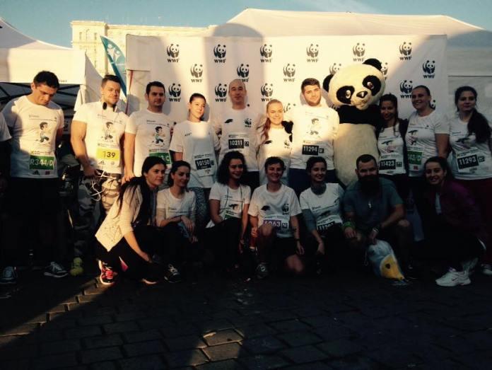 Team Panda @ RBM 2015