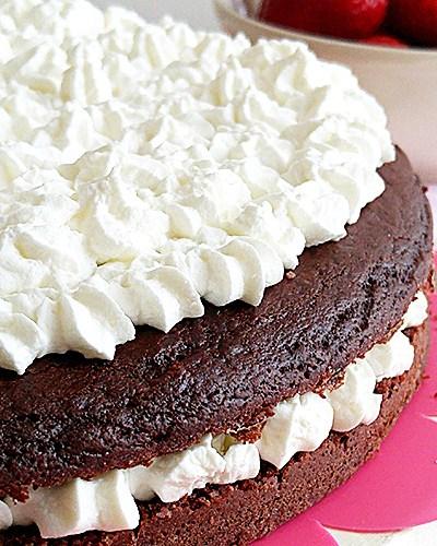 Torta facilissima al cacao senza uova e senza glutine